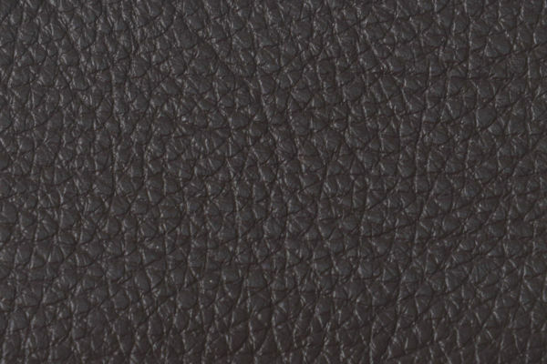 Picture of Upholstery Cape Ox Gazelle SELECTED