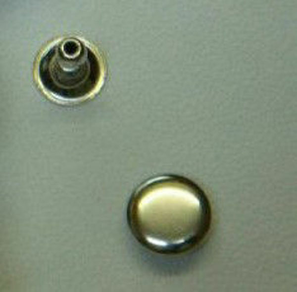 Picture of Rivets 15mm RVT215 - Nic